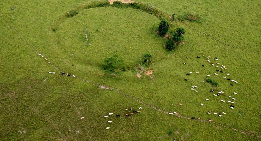 Geoglifos en Acre, Brasil