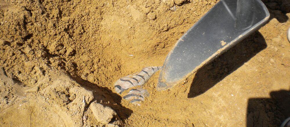 Arqueología (imagen referencial)