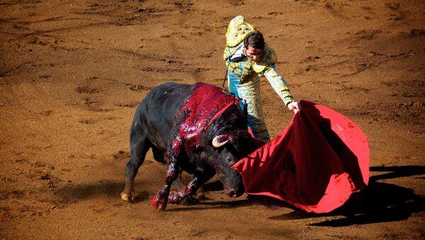 Una corrida de toros - Sputnik Mundo