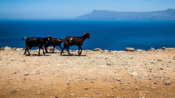 Creta, Grecia, referencial - Sputnik Mundo