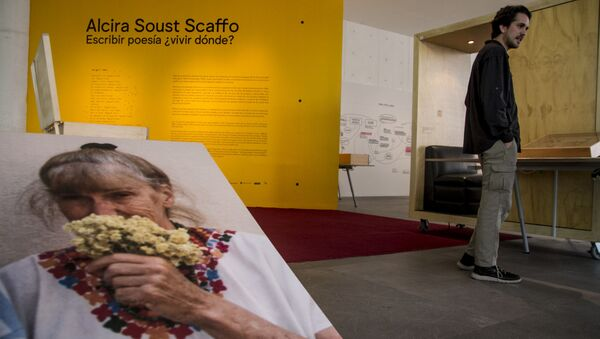 Agustín Fernández muestra la obra su tía abuela Alcira Soust, en el Museo de Arte Contemporáneo - Sputnik Mundo