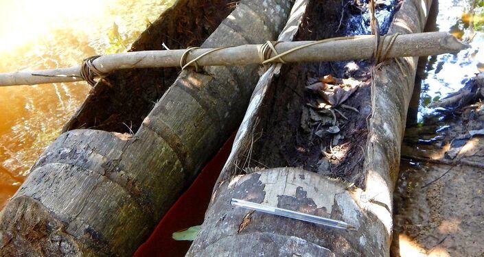 Canoas indígenas, encontradas durante la expedición