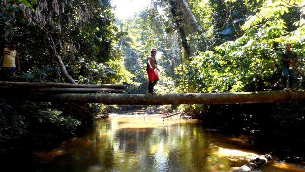 La expedición de Funai detinada a encontrar tribus indígenas aisladas - Sputnik Mundo