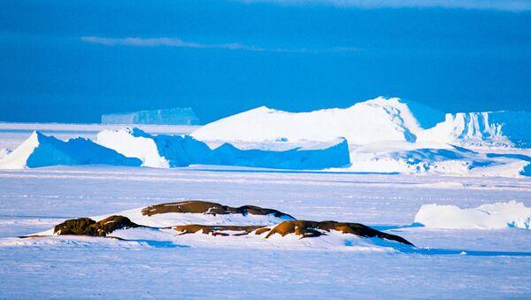 La Antártida - Sputnik Mundo
