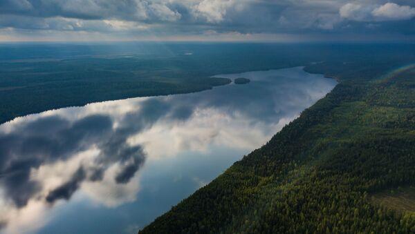 Un lago forestal en Suojarvi - Sputnik Mundo