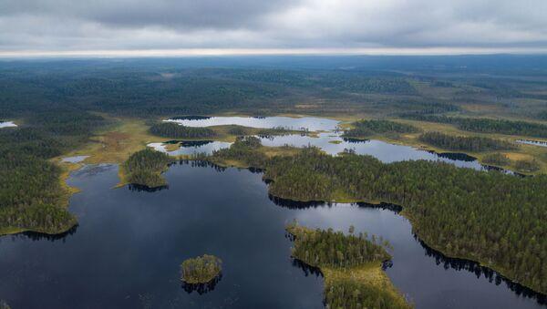 La tierra de los 1.000 lagos: ¡descubre la belleza hipnótica de la región rusa de Carelia! - Sputnik Mundo