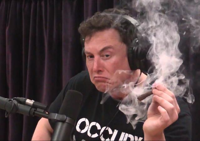 Elon Musk fuma marihuana