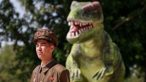 Fin de semana al estilo norcoreano - Sputnik Mundo