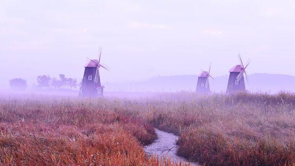 Unos molinos de viento (imagen referencial) - Sputnik Mundo