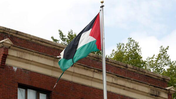 La bandera de Palestina en la sede de la representación de la OLP en Washington, EEUU - Sputnik Mundo