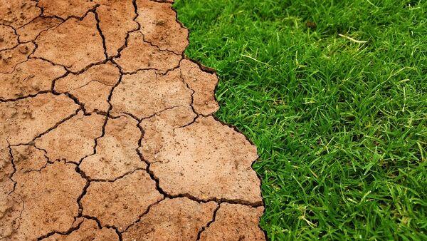 Sequía se adelanta - Sputnik Mundo