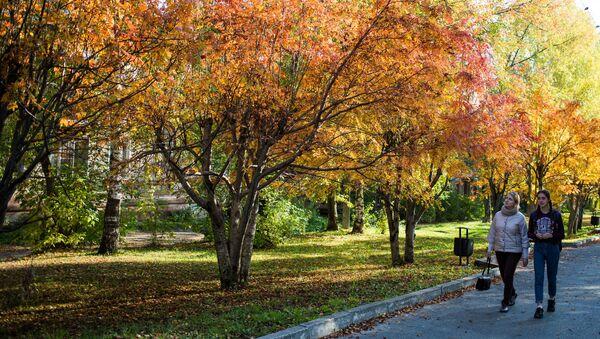¿Qué es el otoño boreal? Los mejores paisajes de Rusia, en imágenes - Sputnik Mundo