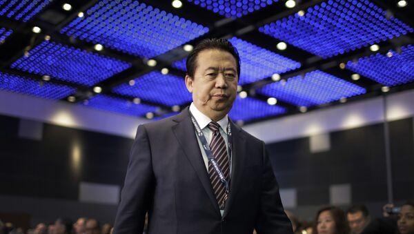 Meng Hongwei, exjefe de Interpol - Sputnik Mundo