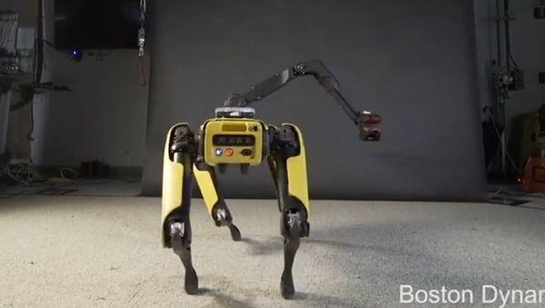SpotMini, robot de la empresa Boston Dynamics - Sputnik Mundo