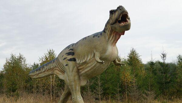Tyrannosaurus rex - Sputnik Mundo