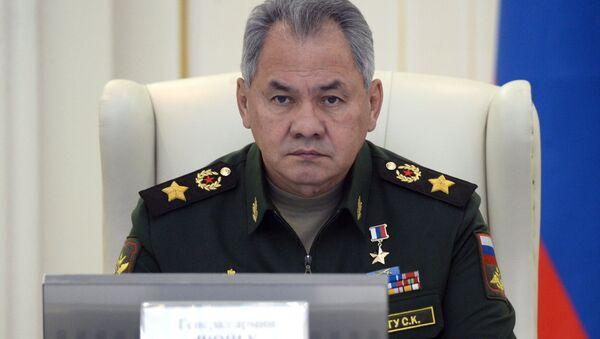 Serguéi Shoigú, ministro de Defensa ruso - Sputnik Mundo