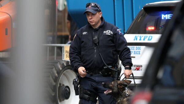 Agente de policía de Nueva York, EEUU - Sputnik Mundo