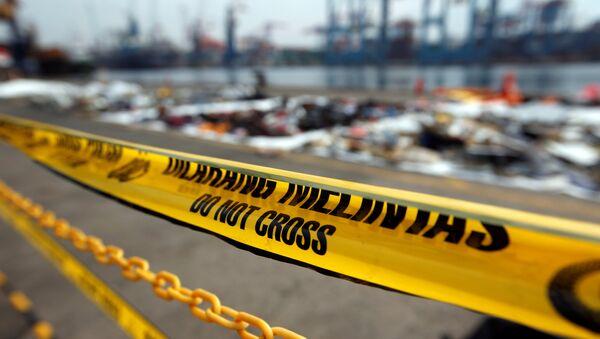 Fragmentos del avión de la compañía Lion Air siniestrado en Indonesia - Sputnik Mundo