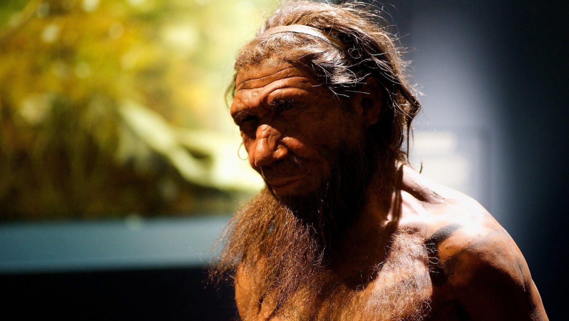 Un neandertal (imagen referencial) - Sputnik Mundo, 1920, 03.04.2020