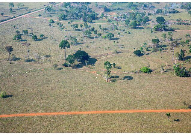 Un geoglifo en el lugar de las excavaciones arqueológicas Jaco Sa