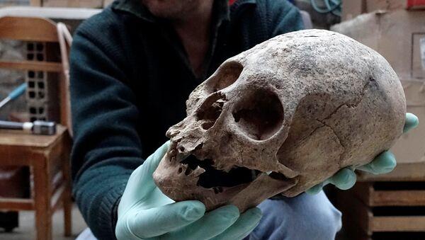 El arqueólogo Jedu Sagarnaga sostiene un cráneo como parte de un hallazgo arqueológico, en Mazo Cruz - Sputnik Mundo
