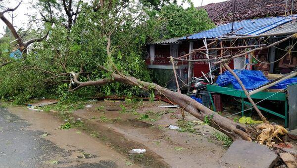 Los daños por el ciclón Gaja en la India - Sputnik Mundo