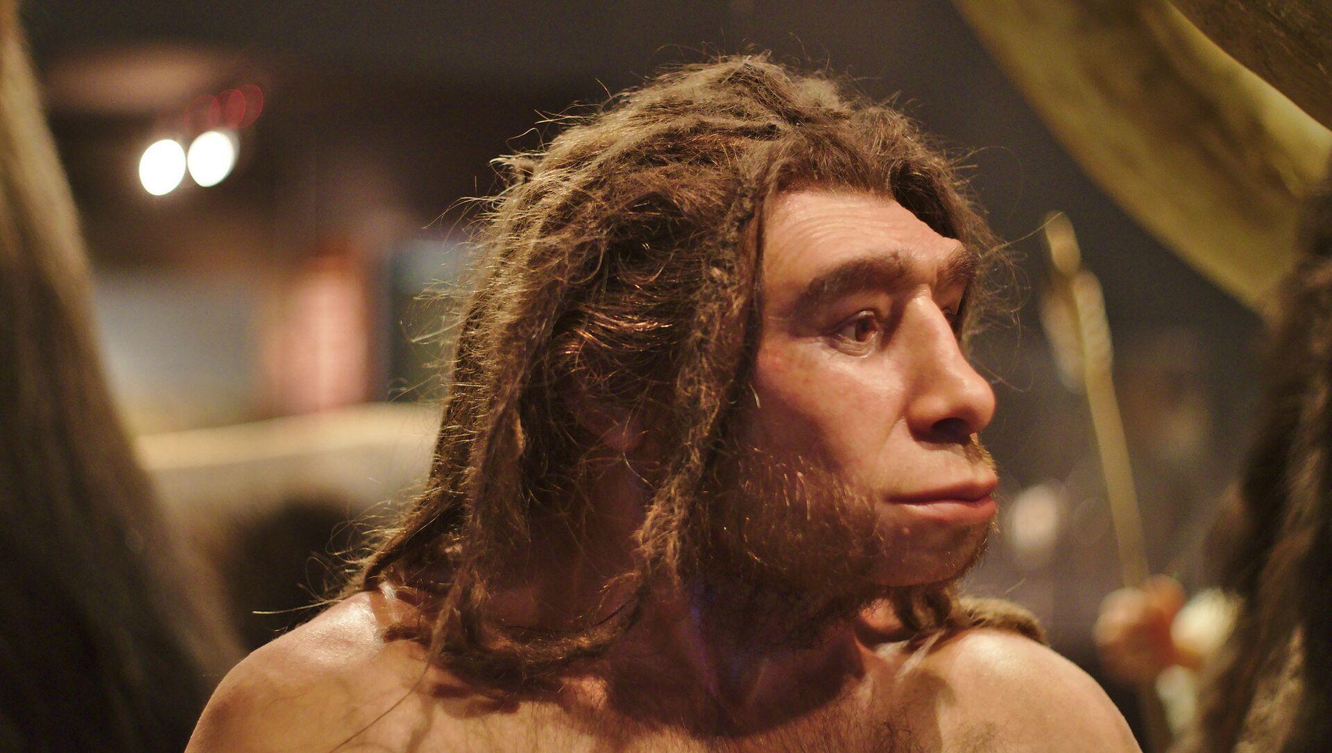 Un homo neanderthalensis en el museo de Munster (Alemania) - Sputnik Mundo, 1920, 25.04.2020