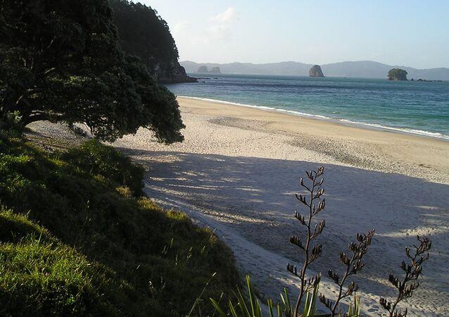 Una playa en Nueva Zelanda
