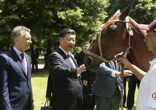Mauricio Macri, presidente de Argentina, le regala un caballo de polo a su homólogo chino, Xi Jinping