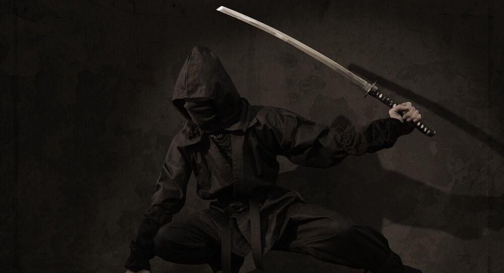 Un ninja (imagen ilustrativa)