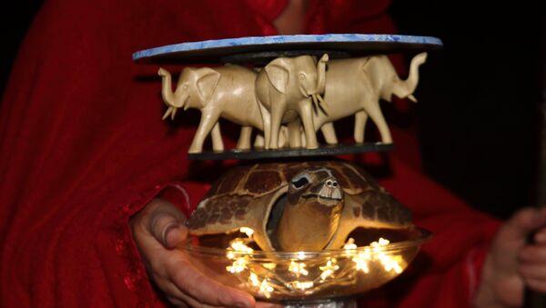 Un juguete simbolizando la Tierra Plana con una tortuga y tres elefantes encima - Sputnik Mundo