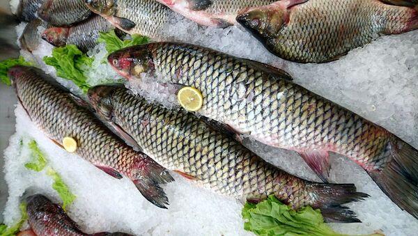 Un mercado de pescado, referencial - Sputnik Mundo