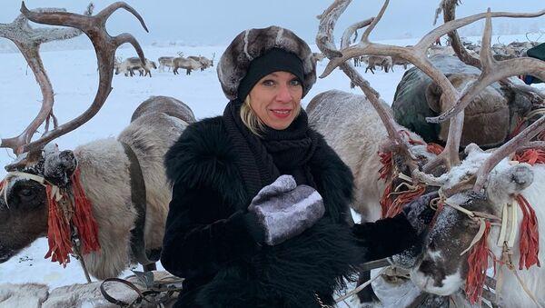 María Zajárova, portavoz de la Cancillería rusa, cumple su sueño de ver a un venado - Sputnik Mundo