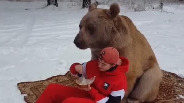 ¿Te atreves a compartir un picnic con un oso gigante? - Sputnik Mundo