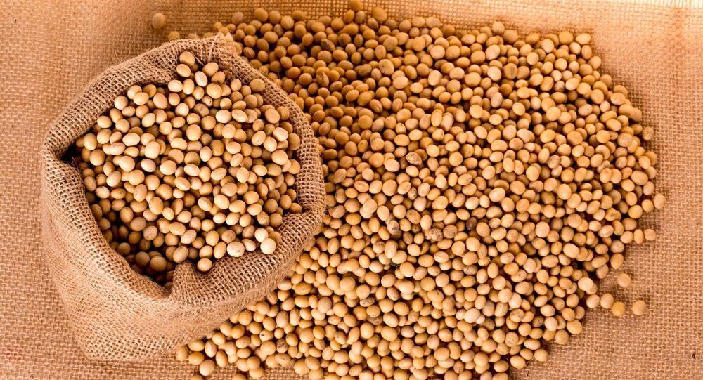 China ya no necesita la soja de EEUU: ¿quién es su nuevo proveedor ...
