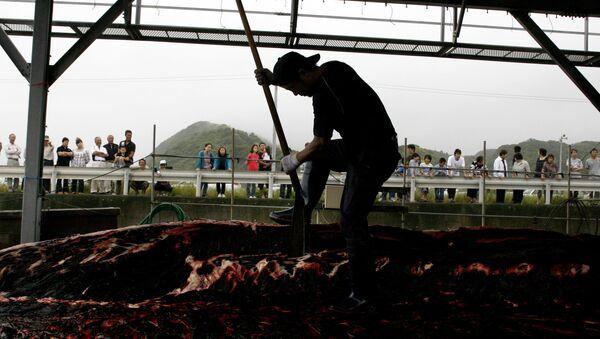 Pesca de ballenas en Japón - Sputnik Mundo