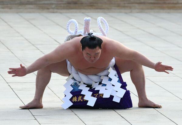 El luchador de sumo mongol Hakuho Sho - Sputnik Mundo