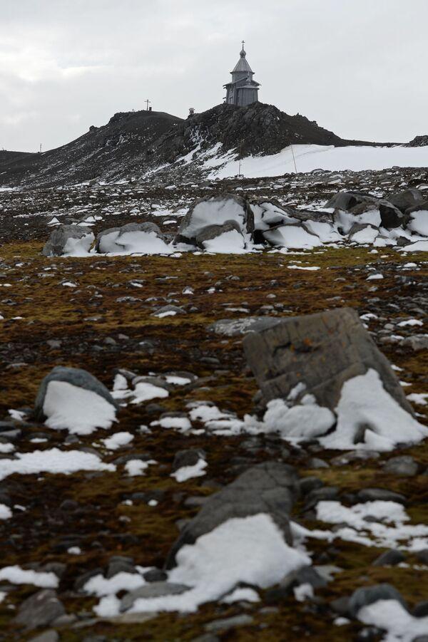Antártida: una mirada desde el pasado - Sputnik Mundo