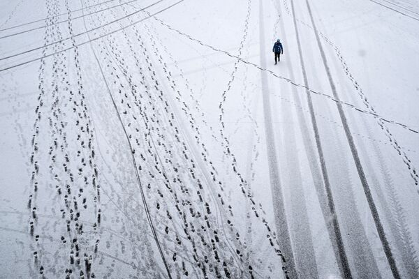 Tigres, modelos y mucha nieve: las fotos más destacadas de la semana - Sputnik Mundo