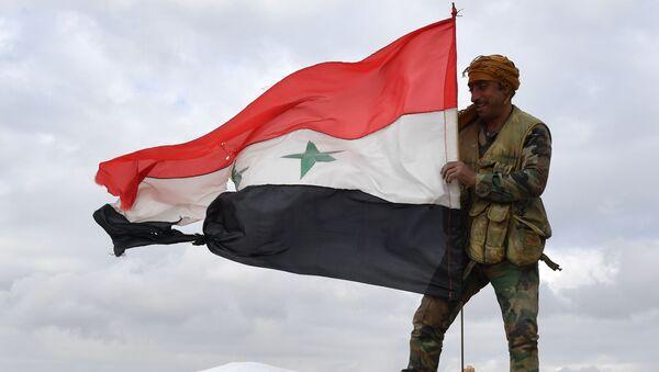 Un soldado sirio izó la bandera nacional (archivo) - Sputnik Mundo