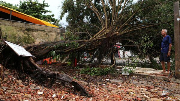 Consecuencias del temporal en Río de Janeiro, Brasil - Sputnik Mundo