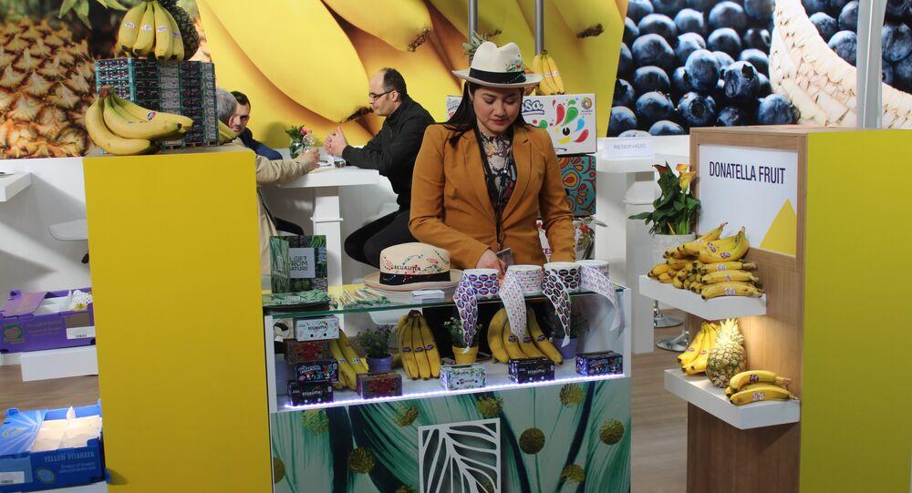 El banano, producto estrella de Ecuador