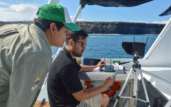 Control del dron que dispersa el cebo para la erradicación de roedores en Seymour Norte - Sputnik Mundo