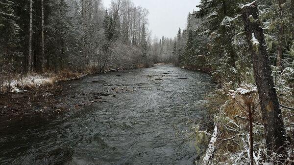 El río Auspia, cerca del paso Diátlov - Sputnik Mundo