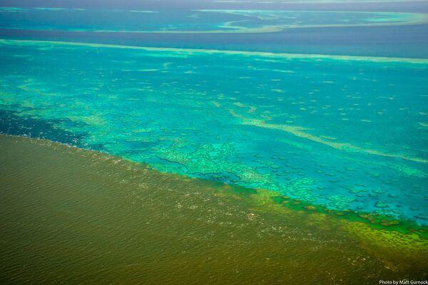 La Gran Barrera de Coral, en peligro mortal - Sputnik Mundo