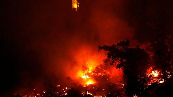 Incendio forestal en Parque Metropolitano de Santiago de Chile - Sputnik Mundo