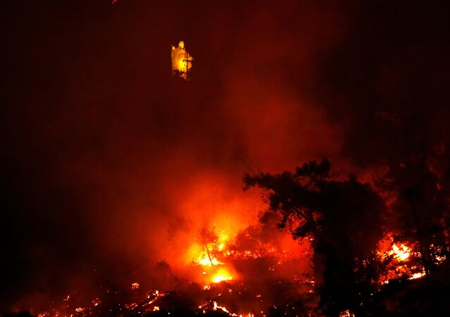 Incendio forestal en Parque Metropolitano de Santiago de Chile