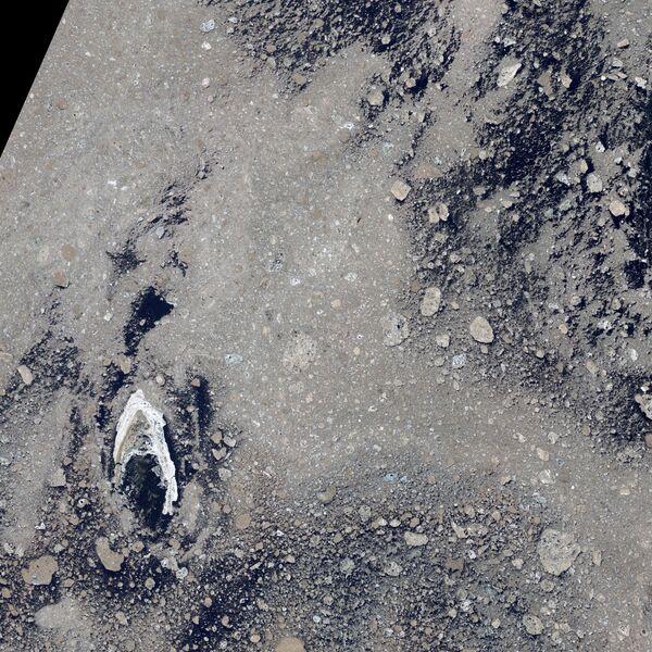Aire, agua, tierra y hielo: impresionantes imágenes de la Tierra vista desde el espacio - Sputnik Mundo