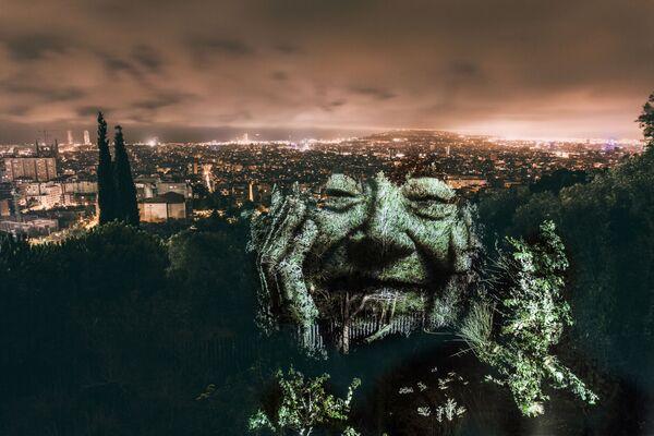 Las caras de los árboles, dibujadas con luz - Sputnik Mundo