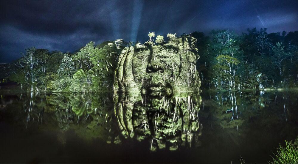 Las caras de los árboles, dibujadas con luz